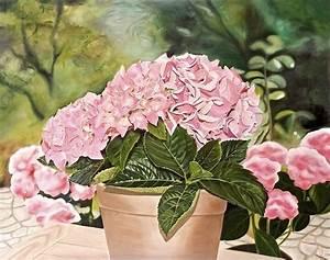 Hortensie Umpflanzen Im Topf : hortensie blumen hortensie im topf lmalerei malerei von iris yazgan bei kunstnet ~ Orissabook.com Haus und Dekorationen