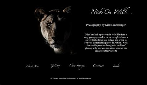 wildlife photography websites   incredible