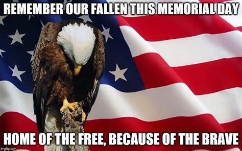 Memorial Day Memes - memorial day imgflip