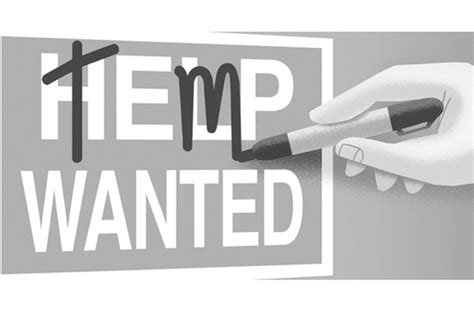 Why You Shouldn't Leave Temp Jobs Out On A Resume. Free Trucking Dispatch Software Download. Occupational Therapy Program Online. South Carolina University Tuition. Heating And Cooling Distributors. Virtual Call Centers Work From Home. Small Business Loan Apply Online. Internal Audit Companies Domestic Equity Fund. Best Password Manager For Ios