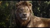 Le Roi Lion (Film). | Disney-Planet