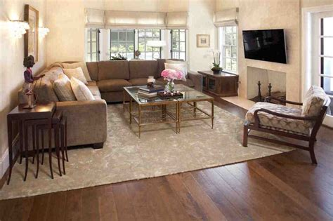 rugs  cozy living room area rugs ideas