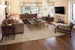 rugs for cozy living room area rugs ideas roy home design With design rugs for living room