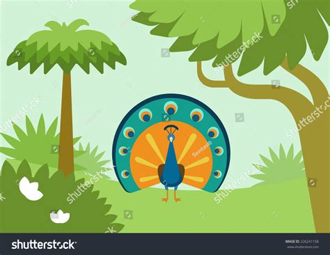 Peacock Flowing Tail Forest Habitat Flat Stock Vector