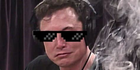 Elon Musk Tweets Completely Out-of-touch Request For Dank