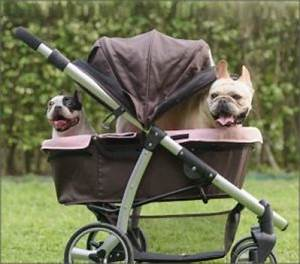 exclusive dog boutique innopet buggy retro pet stroller With dog buggies for sale