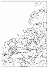 Polina Polinabright Etnici sketch template