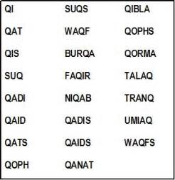 scrabble words that start with q and end in n