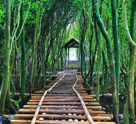objek wisata jogja  murah meriah  instagramable