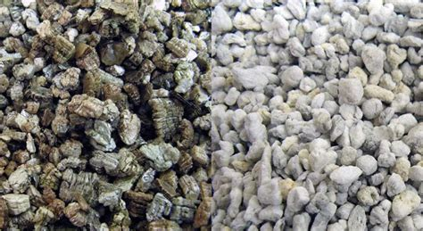 perlite  vermiculite whats  difference