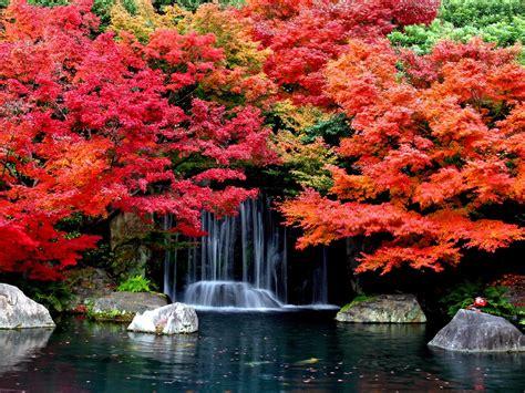 Autumn Falls Desktop Background Hd Wallpapers 1629361 ...