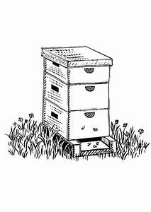 Comment Faire Une Ruche : coloriage d 39 une jolie ruche d 39 abeille ~ Melissatoandfro.com Idées de Décoration