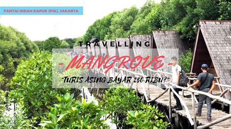 wisata alam mangrove  pik tempat foto keren  tarif