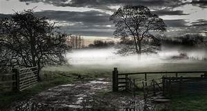 Nature, Photography, Landscape, Mist, Morning, Fence, Gates, Trees, Field, Rain, Dark, Clouds, Wallpaper, And