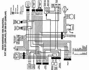 Arctic Cat Panther 340 Wiring Diagram  Schematic Diagram