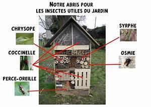 Abri à Insectes : site internet de l 39 cole maternelle danielle casanova l ~ Premium-room.com Idées de Décoration