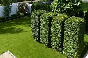 Kleine Gärten Große Wirkung : gr ne skulpturen f r gro e und kleine g rten ~ Markanthonyermac.com Haus und Dekorationen
