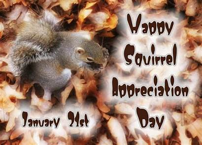 Squirrel Appreciation January Nuts Today Every Holiday