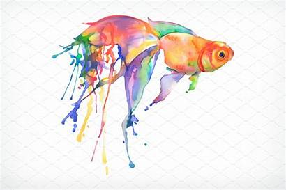 Goldfish Painting Background Watercolor Vector Illustration Peces