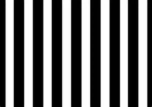 Black and White Flag with Stripes
