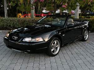 2003 Ford Mustang GT Deluxe Convertible Ft Myers Florida for sale in Fort Myers, FL | Stock ...