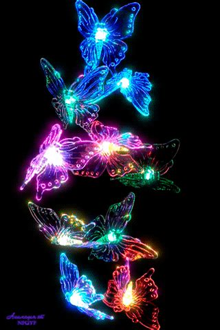 gif pictures butterflies dragonflies butterfly gif