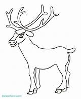 Elk Coloring Bull Drawing Head Printable Simple Sketch Horns Getdrawings Library Clipart Popular Getcolorings Template sketch template