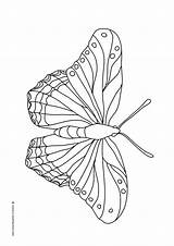 Butterfly Coloring Butterflies Pages Mandala Flying Wings Beautifl Ic Patterns Different Children Clipartqueen sketch template