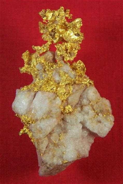 pictures  gold nuggets gold nuggets  sale buy