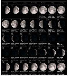 Moon Phase Chart February 2018 August 2019 Malayalam Calendar Calendars Pinterest