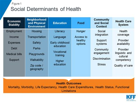 how the environment impacts your health social