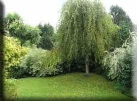 Der Garten Als Sinnbild by Der Garten