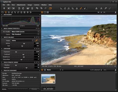 digital camera raw file converter software