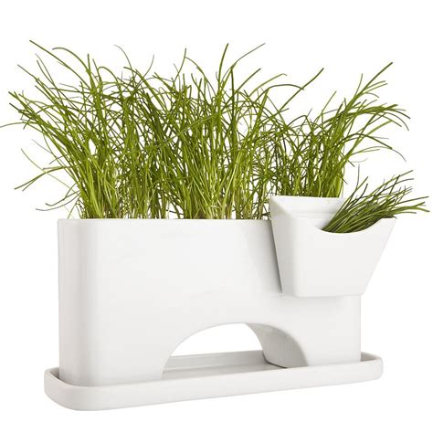 Window Sill Plant Holder by Sprout Planter Makes Use Of A Limited Space On A