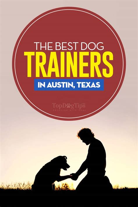 dog trainers  austin texas top dog tips