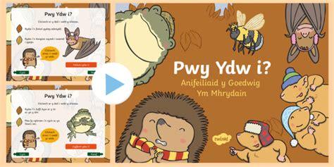 * New * Pŵerbwynt Pwy Ydw I? Anifeiliaid Y Goedwig Ym Mhrydain