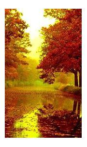 Nexus Desktop Wallpaper 1920x1080 Nature (55+ images)