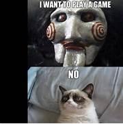 Pin Angry Cat No Meme ...