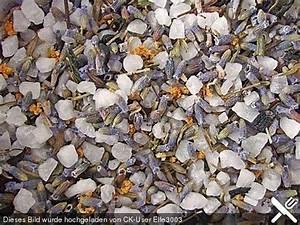 Hortensien Blau Färben Essig : die besten 25 lavendel ideen auf pinterest zitronenseife blume aquarell und wasserfarbenblumen ~ Bigdaddyawards.com Haus und Dekorationen