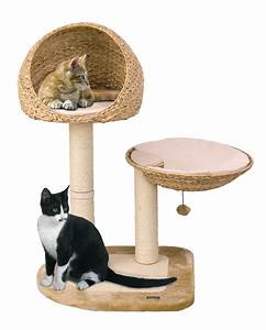 Arbre A Chaton : trouver l 39 arbre chat parfait pour son maine coon ~ Premium-room.com Idées de Décoration