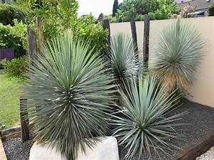 Paysagiste jardin méditerranéen Paysagiste jardin méditerranéen