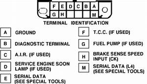 Gm Aldl Wiring Diagram : obd 1 trouble codes for 1995 and older gm vehicles ~ A.2002-acura-tl-radio.info Haus und Dekorationen