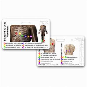 Ekg 12 Lead Placement Horizontal Badge Card  U2013 Scrubgear Com