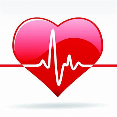 Medical Heart Clipart Healthy Clipartmag
