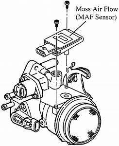 F150 Serpentine Belt Diagram