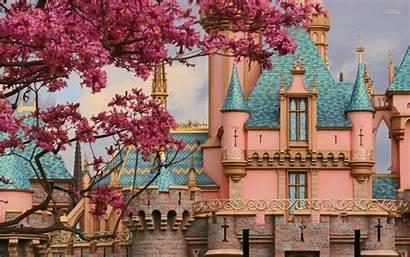 Sleeping Beauty Disney Castle Wallpapers Disneyland Princess