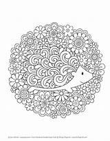 Doodles Notebook Coloring Pages Super Volinski Adult Doodle Activity Mandala Hedgehog Jess Books Printable Colouring Sheets Sheet Adorable Animals Animal sketch template
