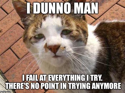 I Dunno Meme - depressed cat imgflip