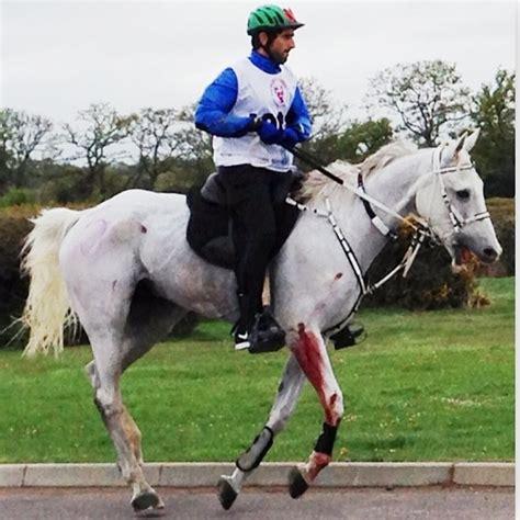 horse hamdan endurance horses mrm hurt dubai accident riding racing windsor gain don equestrian pain faz3 they events prince race