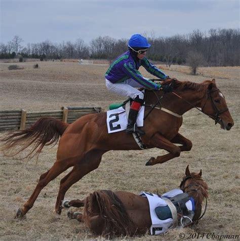jockey athlete horse really does chapman horses david isn right